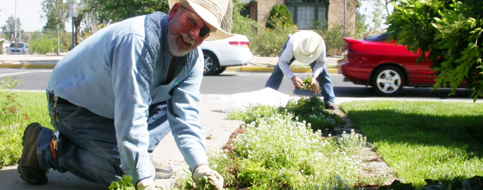 U of New Mexico grounds keepers working on garden.