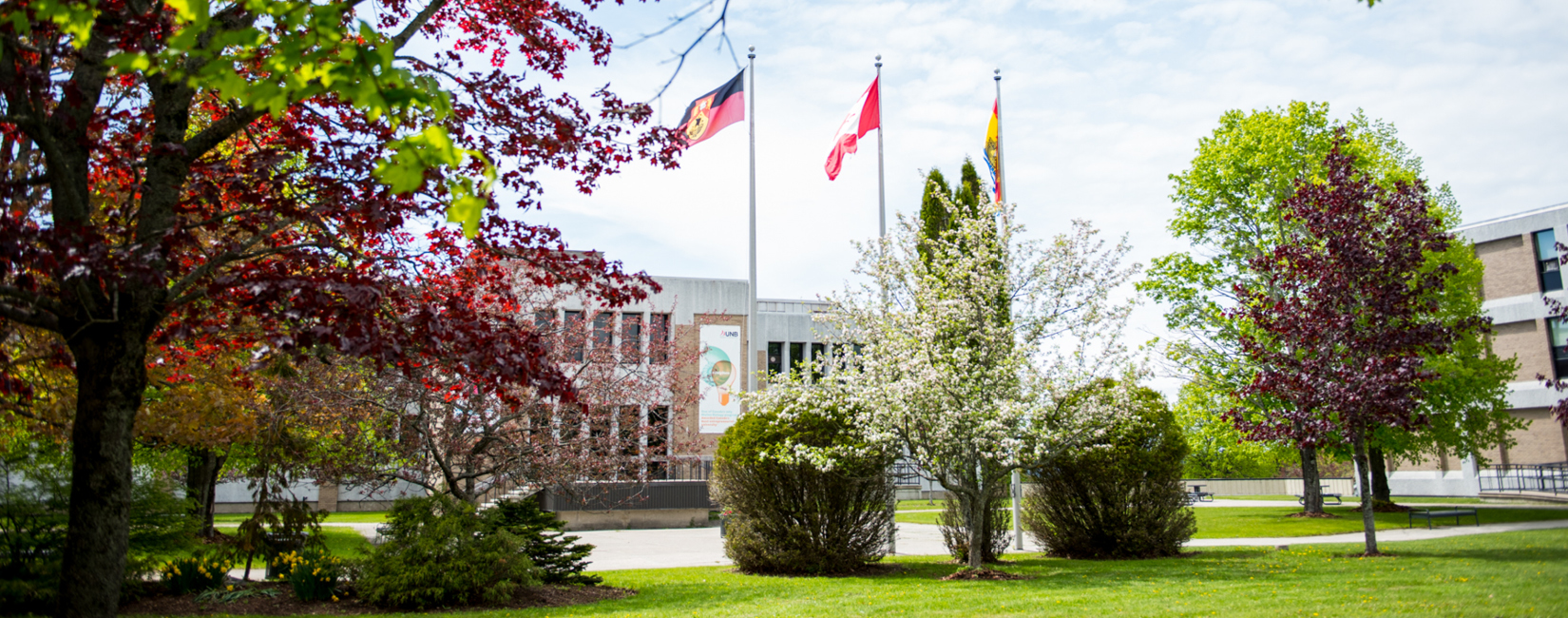 Flags and spring day at University of New Brunswick