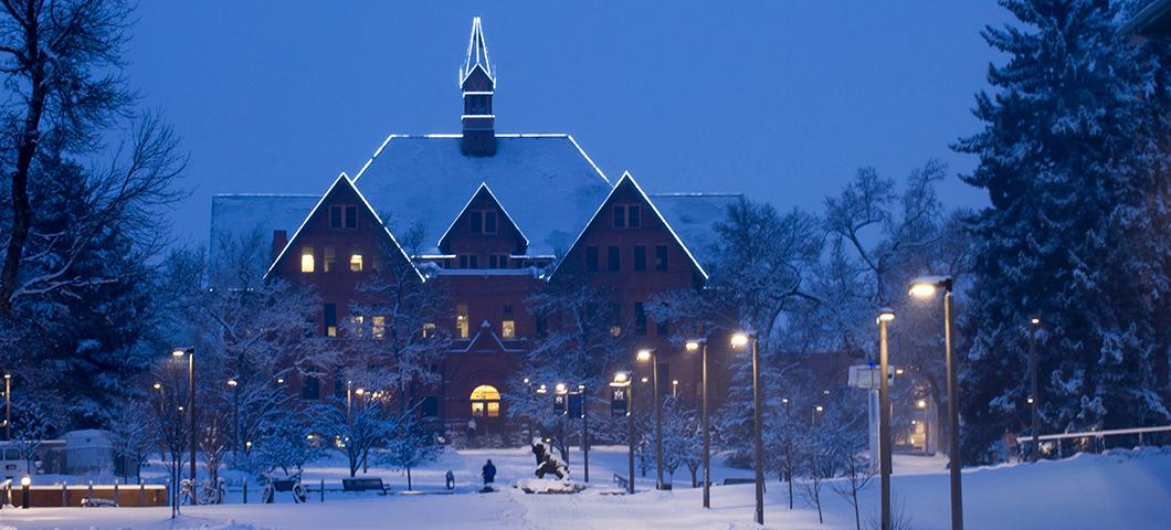 Montana State University campus building at night with decorative lights.